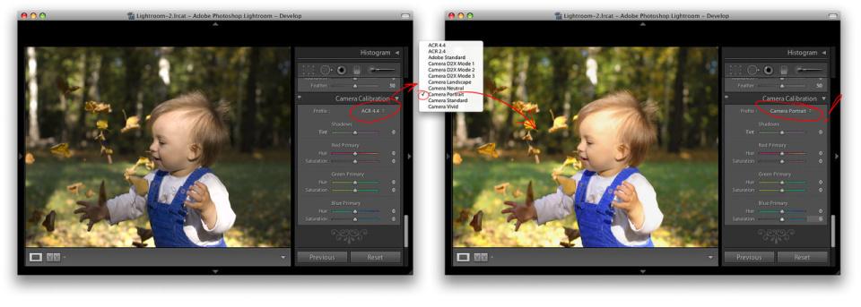 Использование цветового профиля Camera Calibration Profile решает проблему с цветами снимков, сделанных в RAW