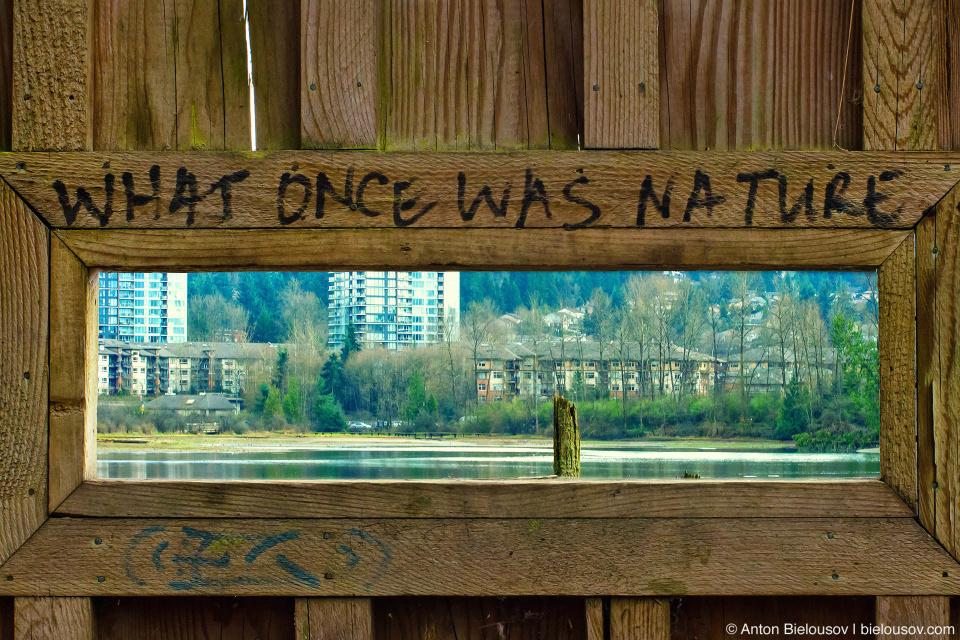 «То, что когда-то было природой» — надпись над амбразурой для наблюдения за птицами