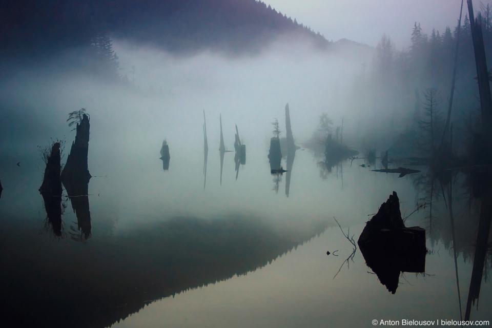 Туман на озере Buntzen Lake
