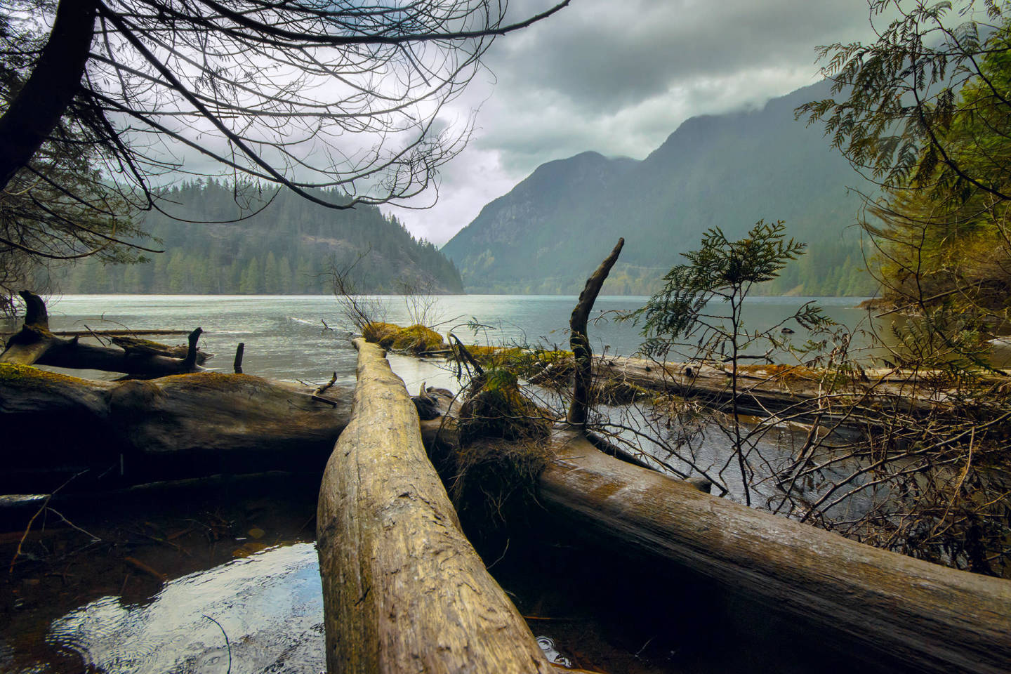 Rainy moning at Buntzen Lake, BC