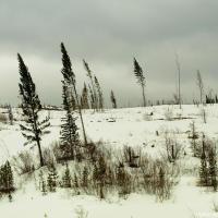 Перевал Pennask Summit (1,728м) — второй по высоте перевал на хайвее в Британской Колумбии.