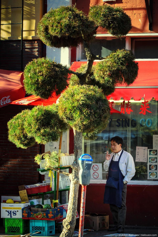 повар китайского ресторана на перекуре (Chinatown, Victoria BC)