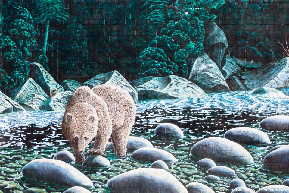 Городской арт. Никто пока не может сравниться в этом с Виннипегом. Spirit Bear — очень популярный реальный персонаж в Британской Колумбии