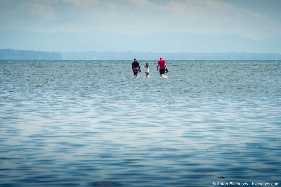 Люди уходят в море по мелководью (Tsawwassen, Vancouver)
