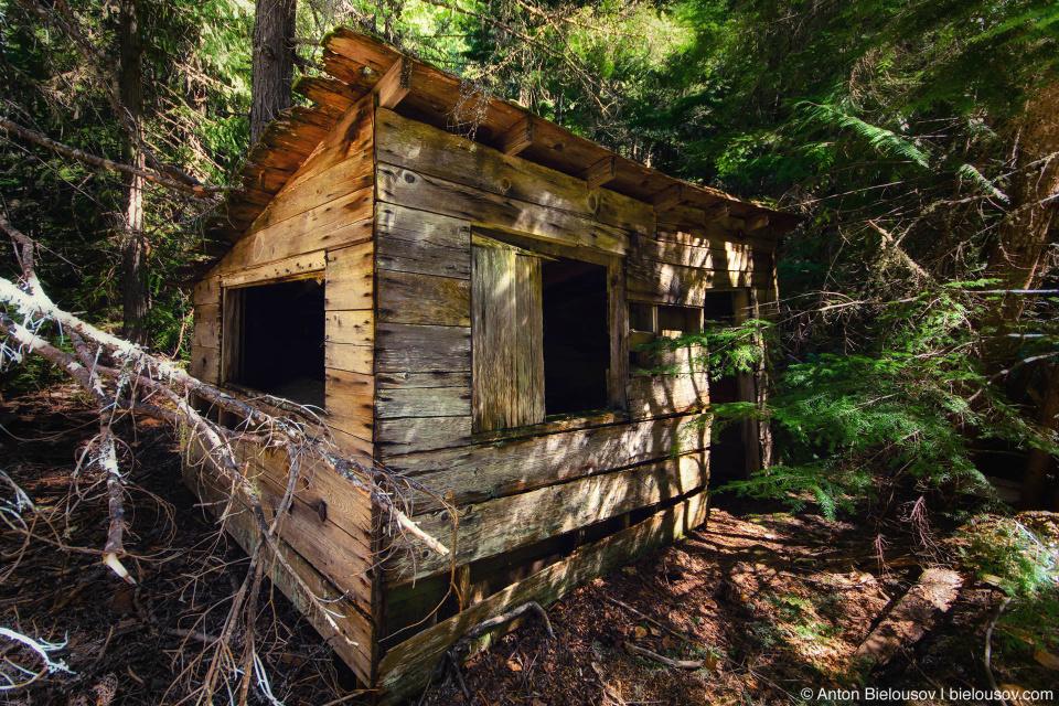Развалины города-призрака Parkhurst в лесу