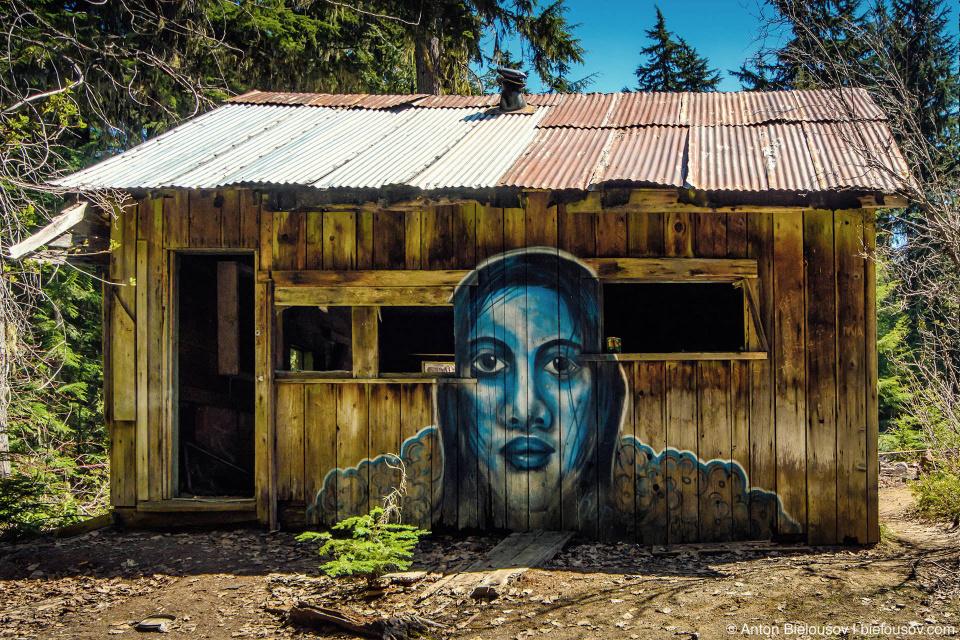 Единственный устоявший дом в поселке Parkhurst (Whistler, BC)