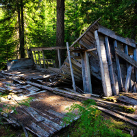 Однако сегодня лес пророс прямо сквозь него. Остатки дюжины домов просто то тут то там встречаются среди леса, никакого намека на планировку улиц не осталось.
