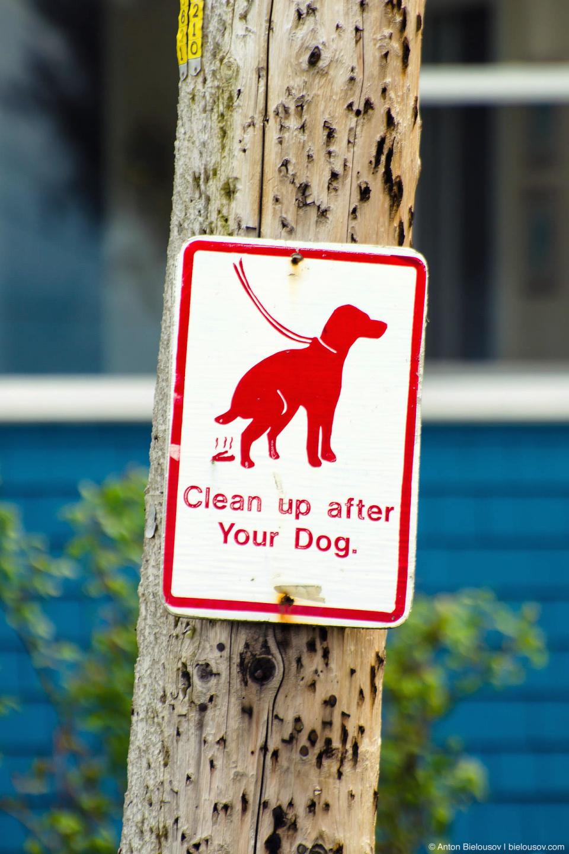 Перегруженный деталями знак, требующий уборки теплого дымящегося говна после собак с анатомией утконосов. (Point Roberts, WA)