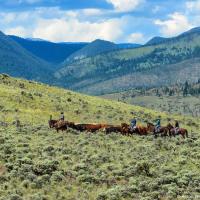 Здесь живут настоящие ковбои, которые не выряжаются так за зарплату на потеху туристам, а просто в их жизни Дикий Запад — это не что иное как одно из названий их дома.