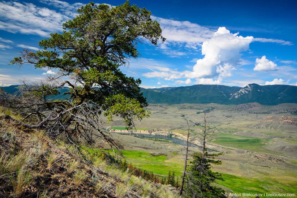 Thompson river valley. (Sundance Guest Ranch, Ashcroft, BC)