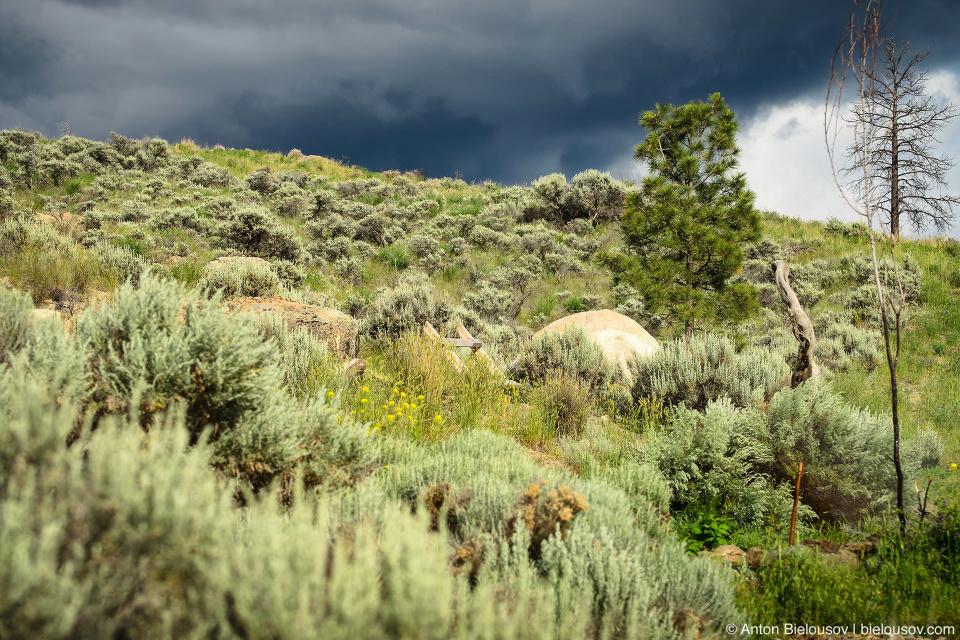 Пейзаж канадской прерии перед дождем (Ashcroft. BC)