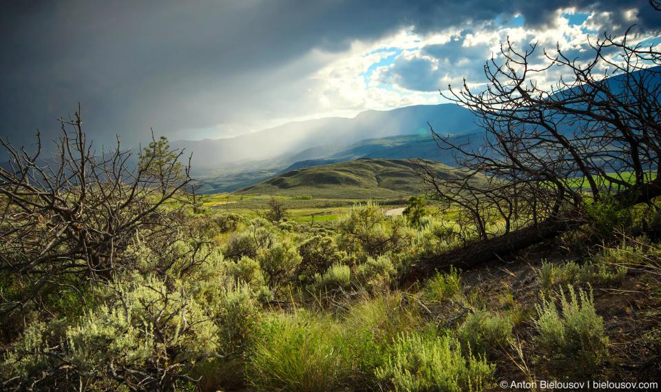 Пейзаж в канадской прерии перед дождем (Ashcroft. BC)