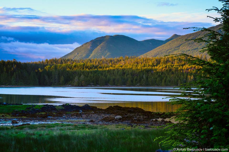 Вид на бухту на закате (Ucluelet, BC)