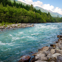 Chilliwack River (Chilliwack, BC)
