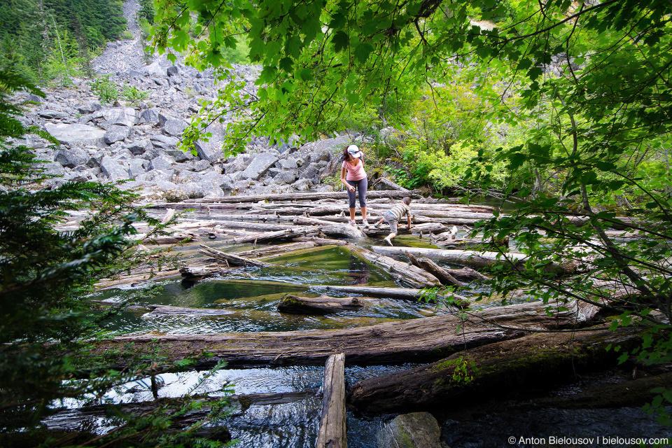 Lindeman Lake Log Debris (Chilliwack, BC)