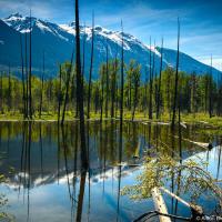 Второй по величине оползень в Британской Колумбии <br/><small>6 августа 2010, Mount Meager (Pemberton, BC)</small>