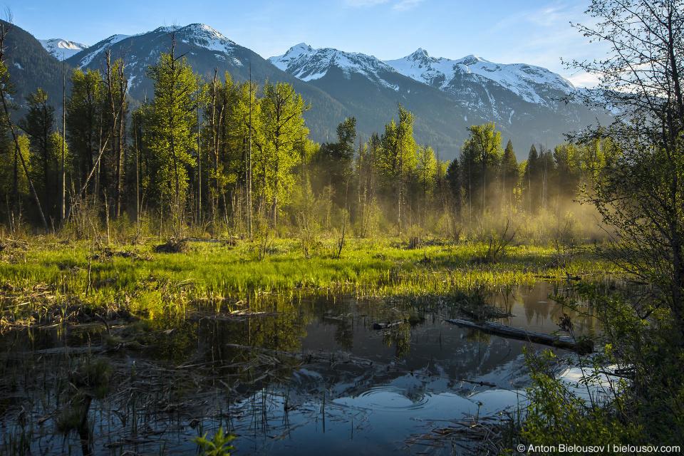 Туман на горном озере (Lillooet River, Pemberton, BC)