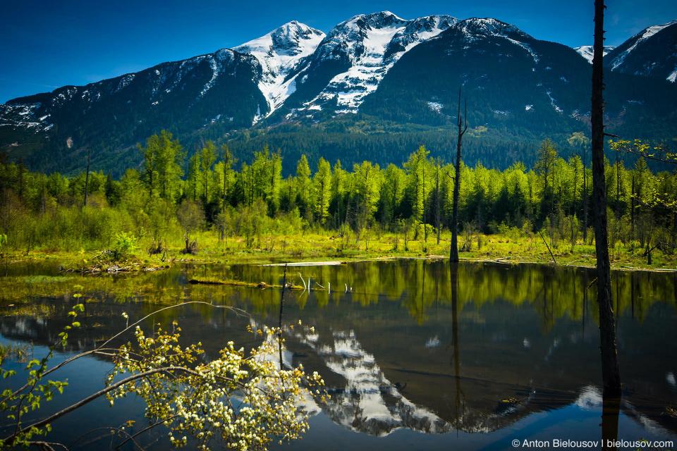 Одно из многих безымянных озер на реке Лиллуэт (Lillooet River, Pemberton, BC)