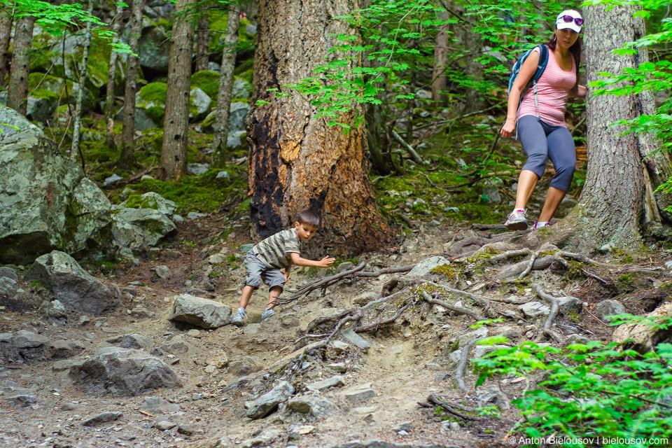 Lindeman Lake Trail (Chilliwack, BC)