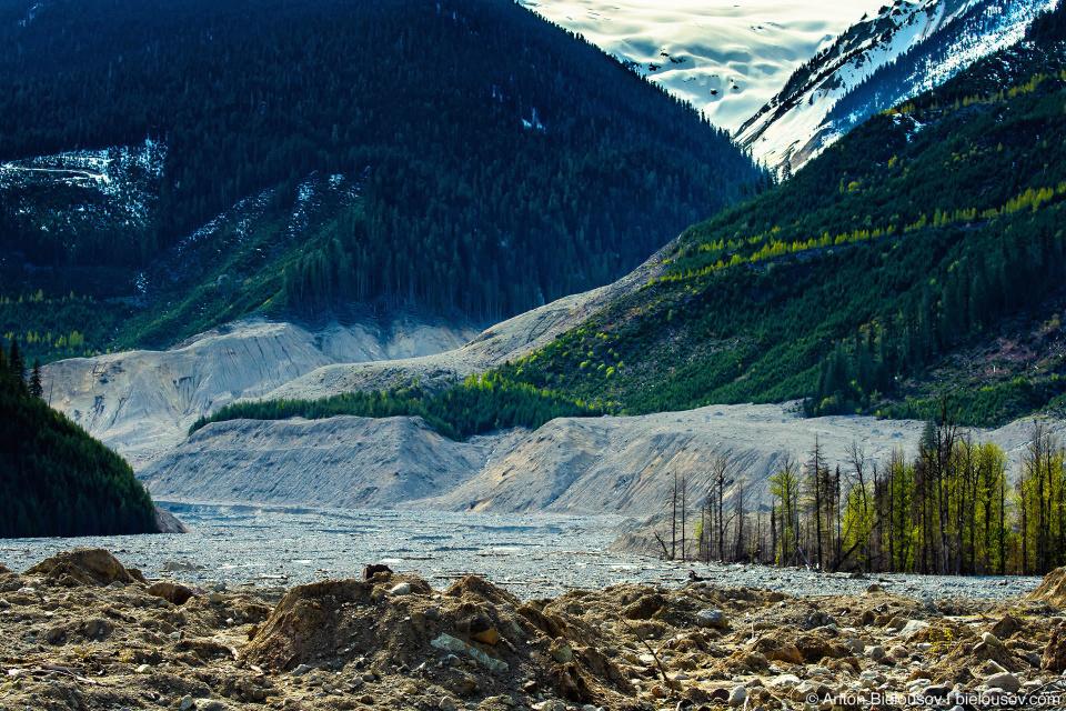 Завалы на месте оползня горы Mount Meager 2010 года в долине Lillooet River в районе городка Pemberton, BC