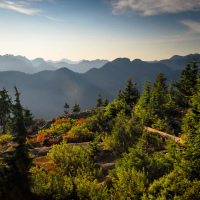 Dog Mountain Trail, Rice Lake <br/><small>Тропы на горе Сеймур</small>