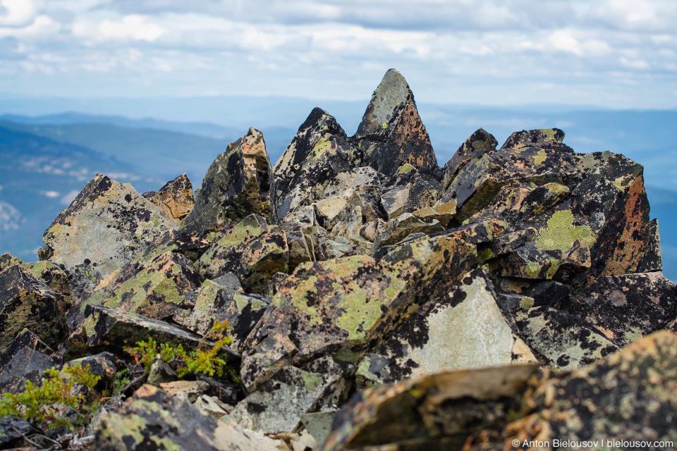 Острые камни, сплощь покрытые лишайниками на вершине Frosty Mountain