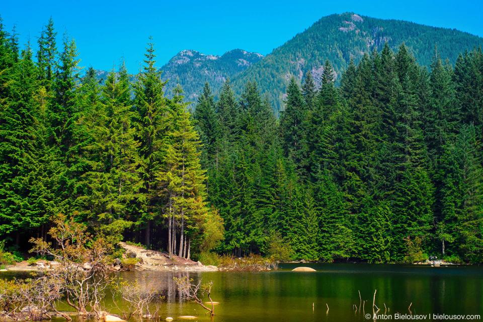 Rice Lake (Vancouver, BC)