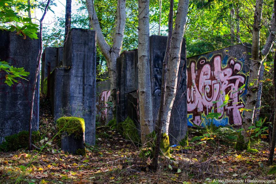 Остатки бетонных построек в лесу (Britannia Beach)