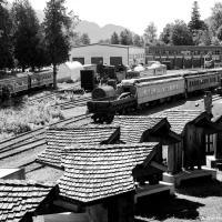 Место, которое запросто могло бы стать просто железнодорожной свалкой, стало, своего рода, краеведческим музеем, ведь вся история заселения Британской Колумбии так или иначе связана с поездами.