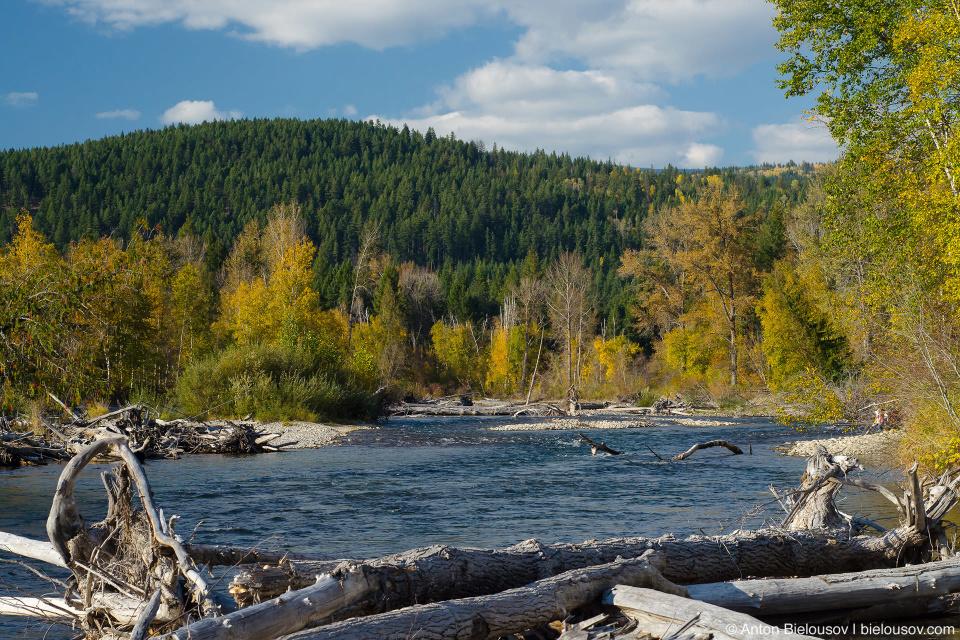 Adams River, BC
