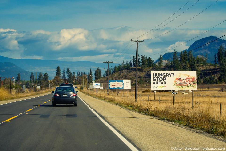 В Камлупсе, как на въезде в провинцию Манитоба, вдоль шоссе кучкуются десятки наскоро сбитых из бревен рекламных щитов.