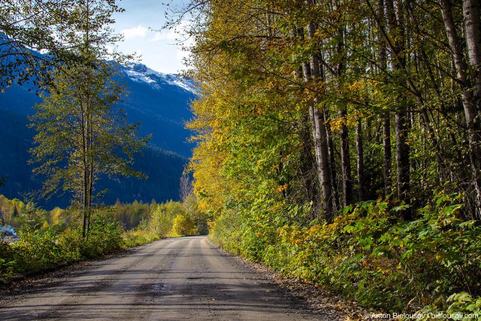 Lillooet Forestry Service Road — здесь так называют гравийные дороги, по которым из лесу вывозят древесину на огромных грузовиках.