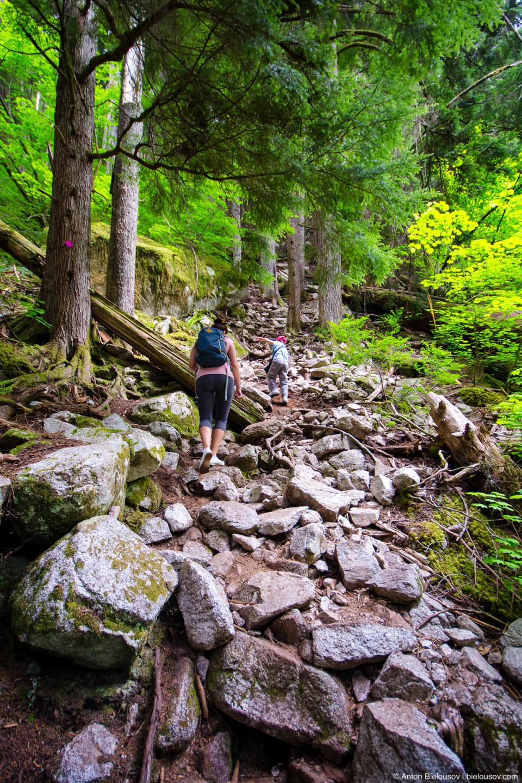 Stawamus Chief mountain trail