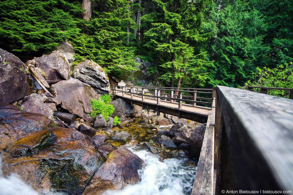 Chief and Upper Shannon trails bridge