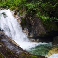 Только в самом конце тропа из лесу выходит к ручью Шеннон — по идее, это и есть вершина высокого водопада. Совсем не то, на что можно было надеяться, не правдали?