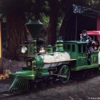 Миниатюрный паровоз в течение 15 минут колесит по лесу, в густой темноты которого разыгрываются сцены из классических фильмов ужасов.