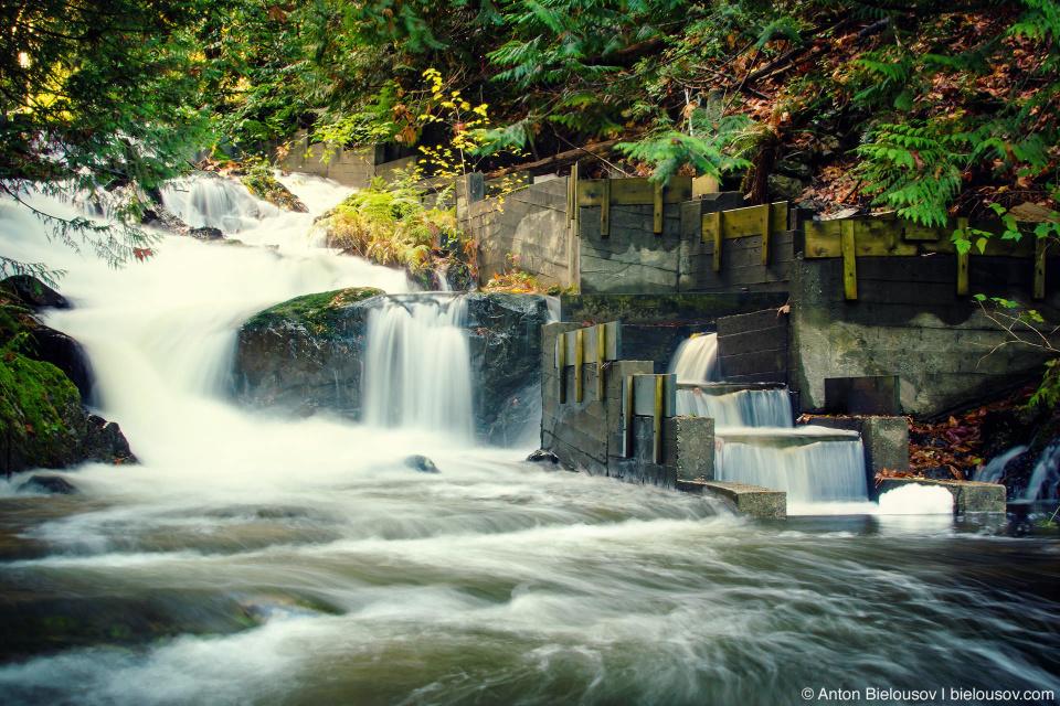 Bridal Veil Falls and salmon run ladder (Bowen Island, BC)