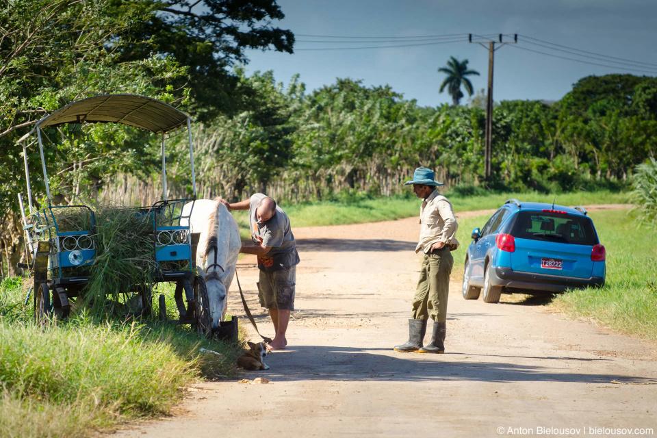 Кубинские фермеры на дороге