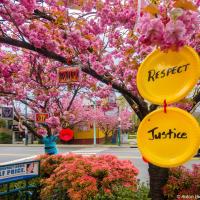 И тарелки, и уважение, и справедливость процветает не то, что, знаете, ли, у братских народов.