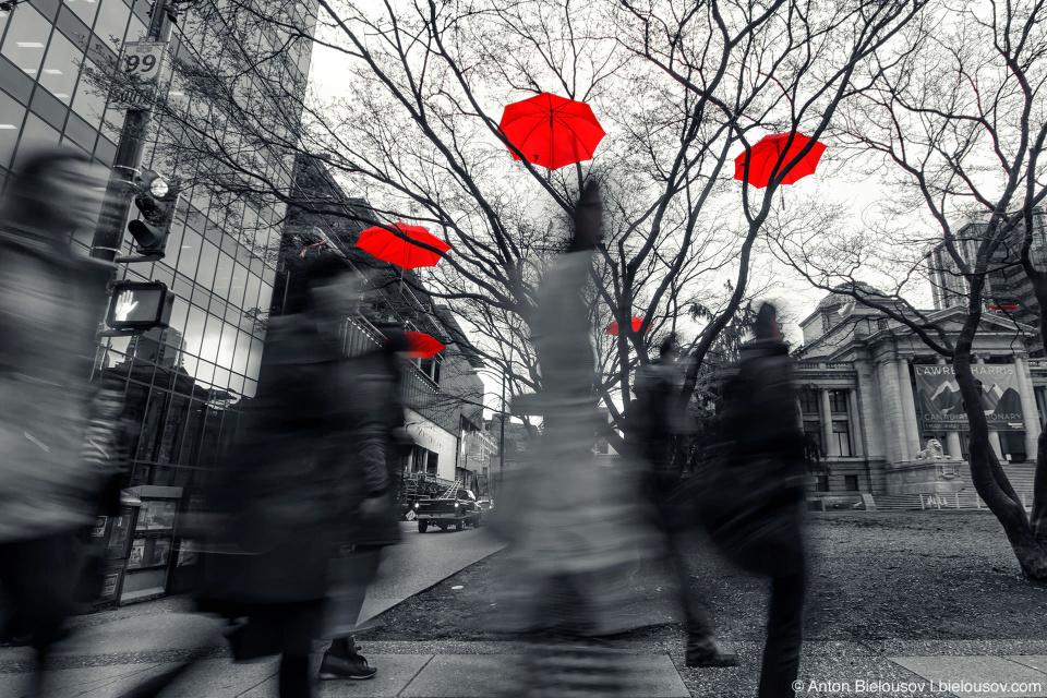 До наступления весны в Канаде остается всего пару дней, а возле ванкуверской галереи искусств заалело еще одно зонтичное дерево. Проект Rainblossom — ода любимому дождливому городу — нашел свое продолжение в центре города.