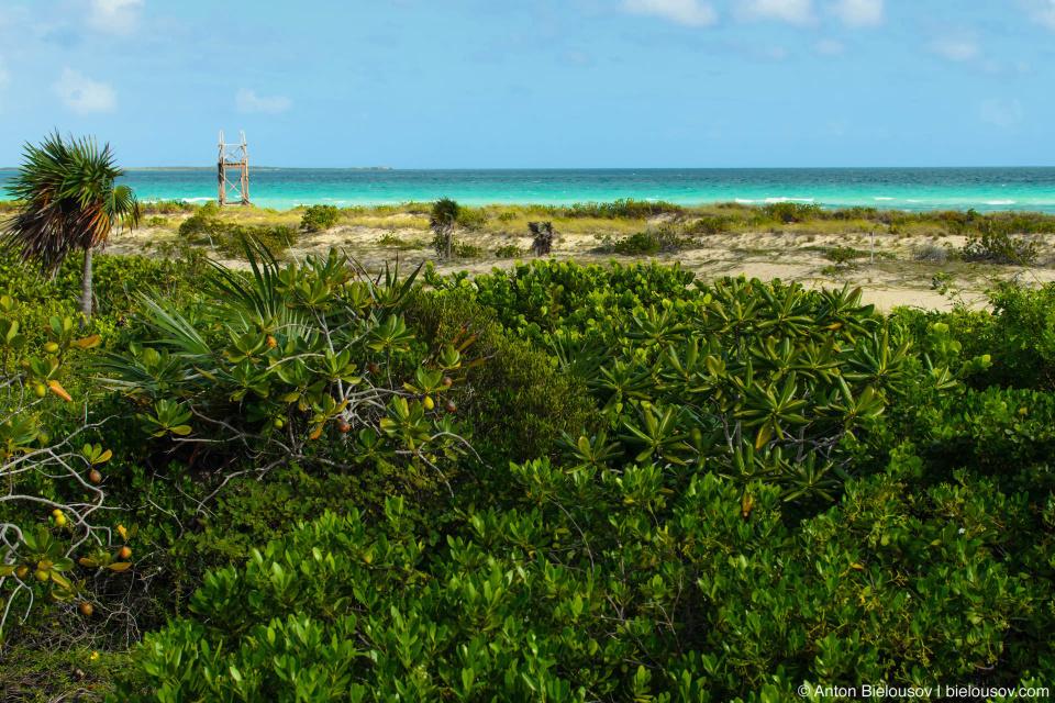Cayo Santa Maria National Park Beach