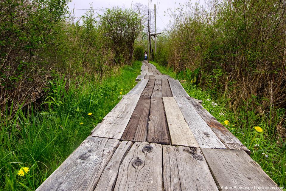 Finn Slough trail (Vancouver, BC)