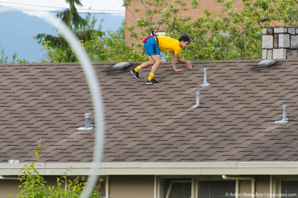 Снитч на крыше в игре в Квиддич (Quidditch)
