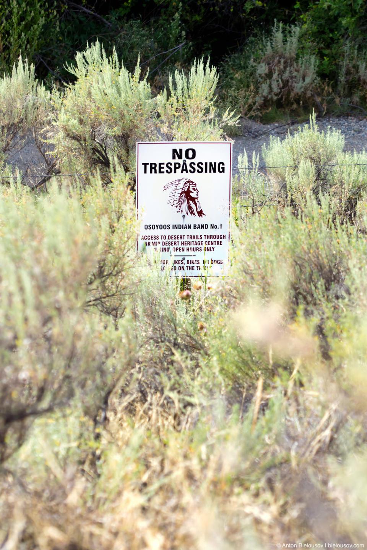 Всю самую «вкусную» часть пустыни местные индейцы Осуюс оградили забором и никого туда не пускают. Эти земли священны — и ниибет. В небольшой загон они согласны пусть за непомерные $14. Nk'mip Desert (Osoyoos, BC)