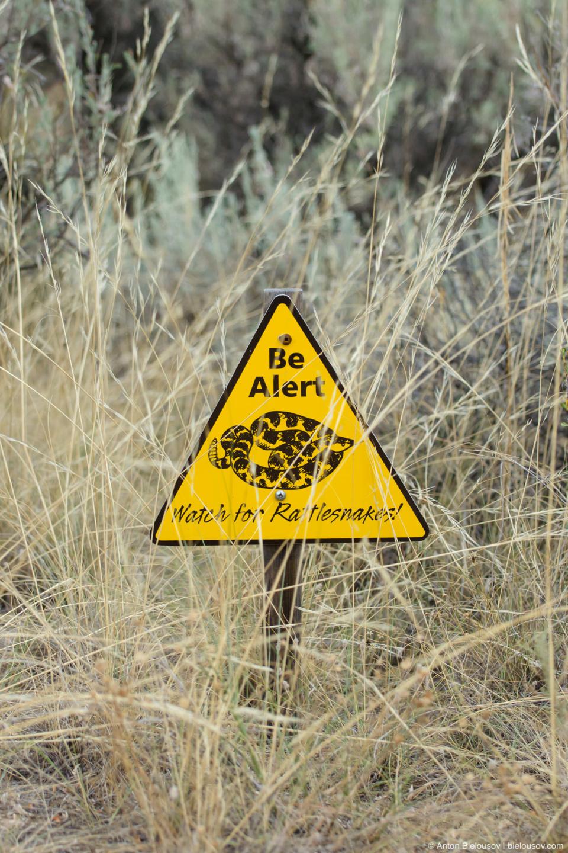 Знак, предупреждающий о гремучих змеях (Nk'mip Desert — Osoyoos, BC)