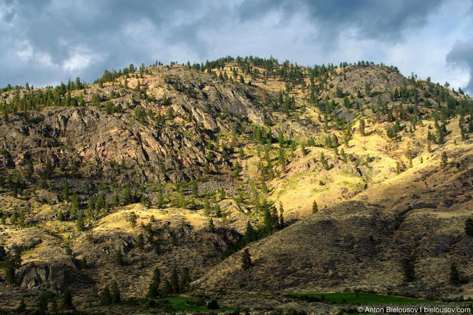 Nk'mip Desert (Osoyoos, BC)