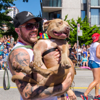 Pitbull Lovers Club — Vancouver Pride Parade, 2014