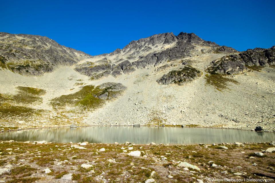 Одна из троп выводит к одноименному озеру — Blackcomb Lake — круглому как тарелочка и такому же интересному.