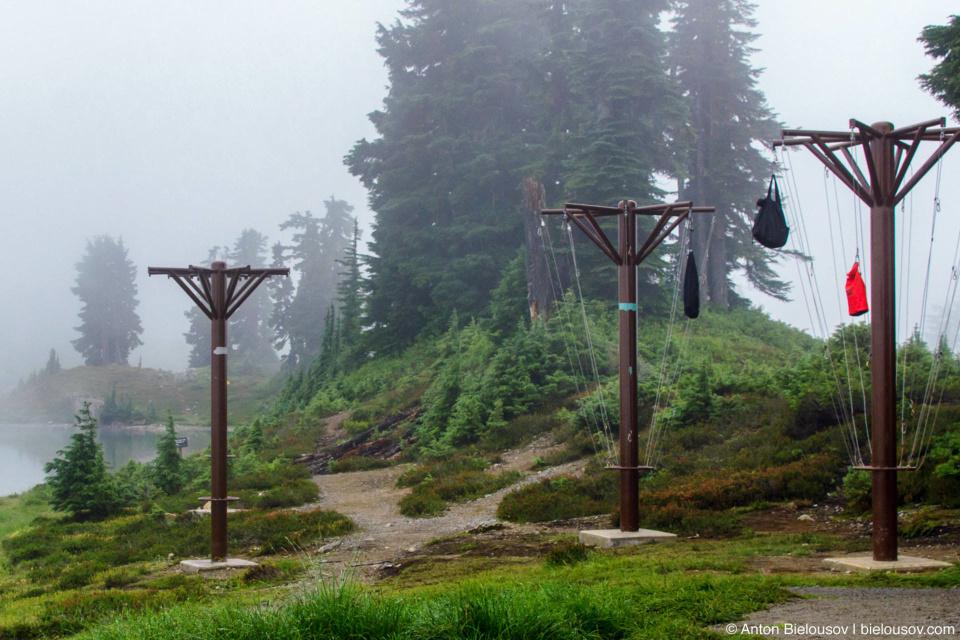 Elfin Lakes campsite bear cache