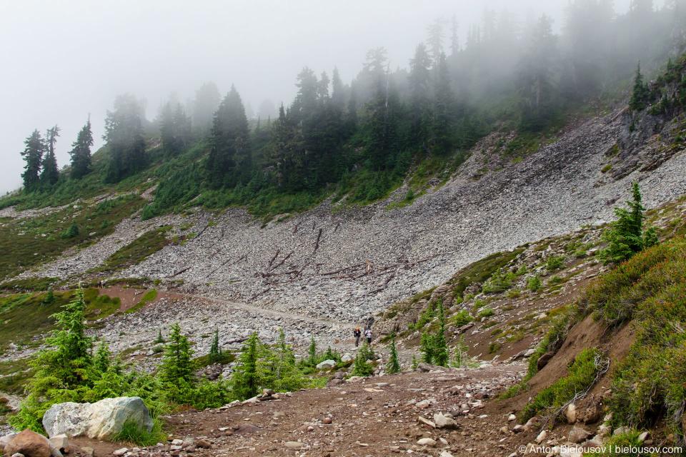 Elfin Lake trail at Round mountain